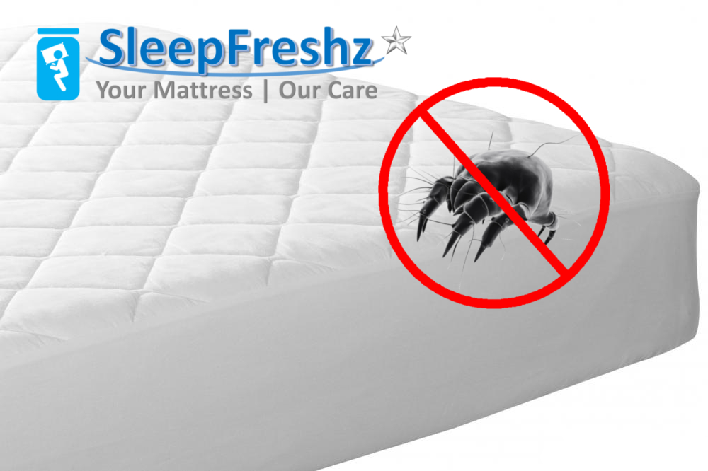 SleepFreshz Cleaning Service offered by SLEEPNIGHT